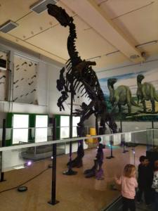 Iguanodon Nora (106)
