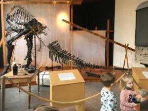 Iguanodon Nora (16)
