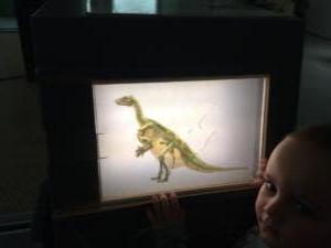 Iguanodon Nora (27)