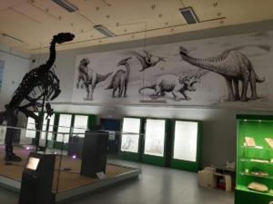 Iguanodon Nora (91)