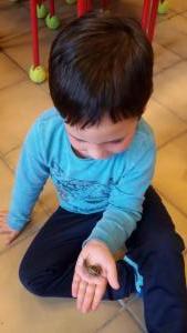 Projet escargot (8)