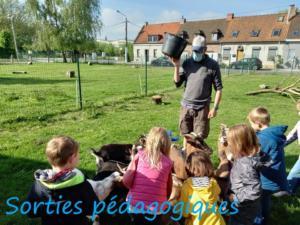 21-Sorties-pedagogiques-1